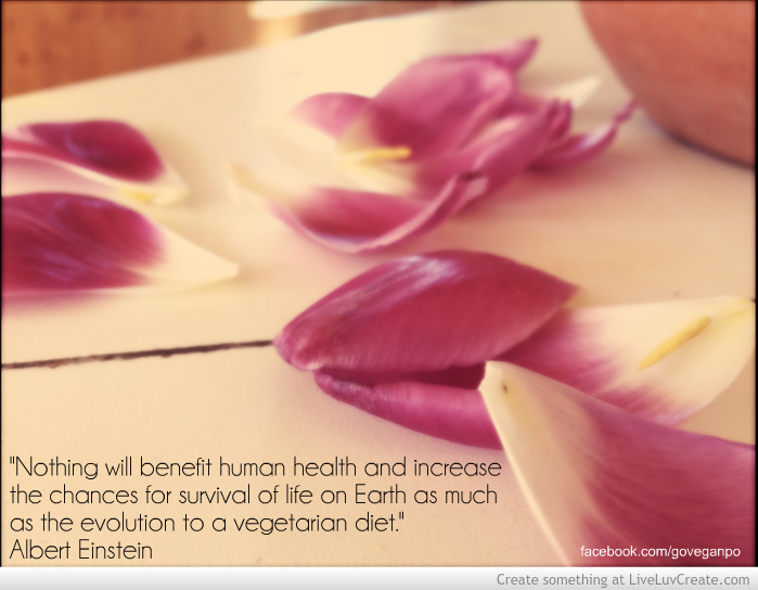 how to go vegetarian and stay healthy